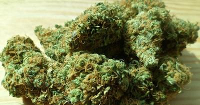 Das erste EU-Land legalisiert Cannabis