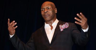 Mike Tyson wollte gegen Gorilla kämpfen - für 10.000 Dollar