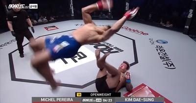 MMA gegen WWE