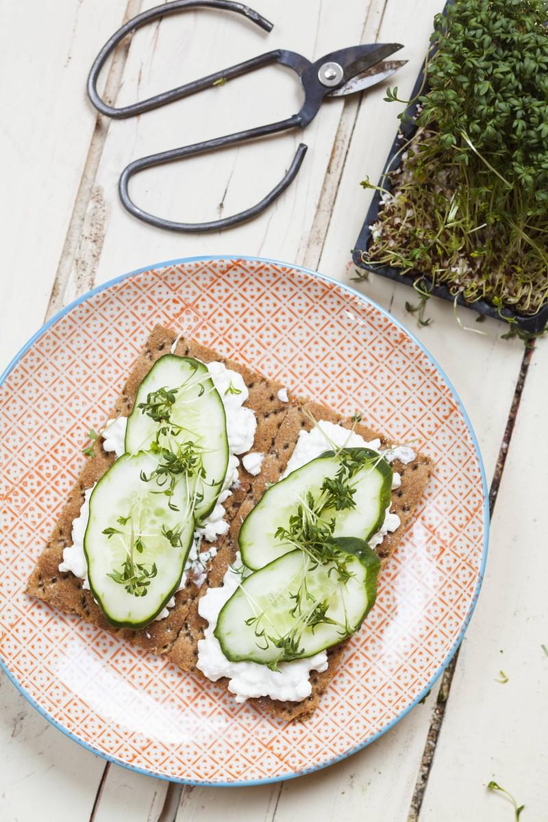 Man erkennt Hüttenkäse auf einem Brot, das sehr viel Eiweiß und wenig Fett beinhaltet