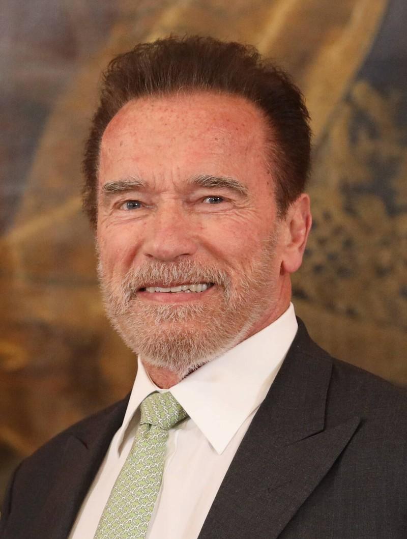 Für viele ist Arnold Schwarzenegger ein Idol.