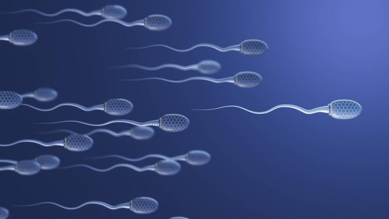 Sperma kann nach 3 bis 4 Tagen schlecht werden