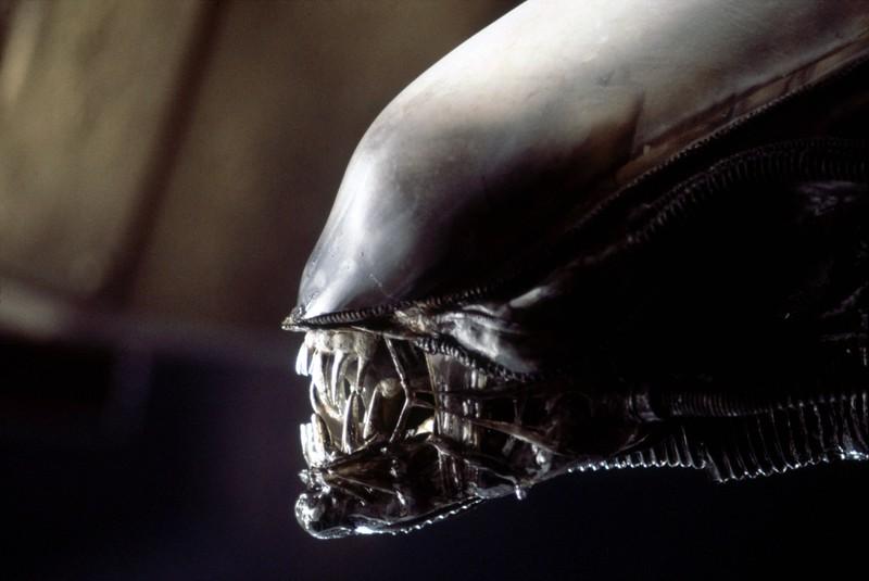 """Alleine die äußere Gestalt des """"Alien"""" macht einem Angst"""